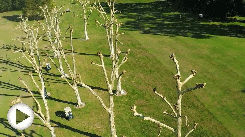 Survol des golfs de Rueil, Saint-Jean de Luz, et Ciboure